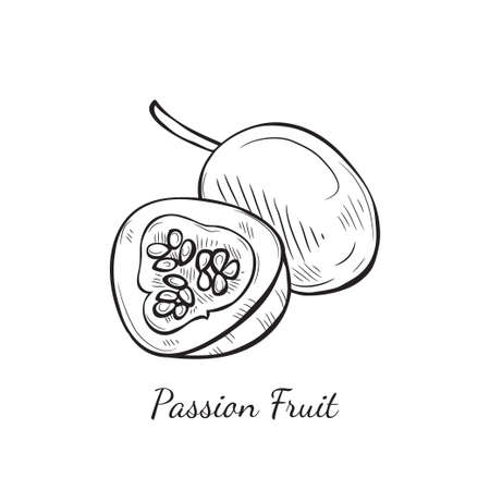 Illustration with cute hand drawn passion fruit. Vector fruit sketch Illustration