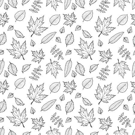 Seamless pattern with cute hand drawn leaves. Nature collection. Vector illustration