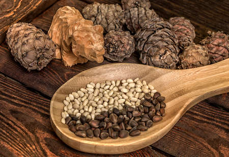Pine nuts. Cedar nuts and cones on wooden table. Wooden bear made of cedar. Cedar. Pine nuts. Cedar cones. Stock Photo