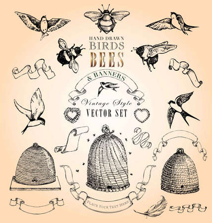 bee hive: Hand Drawn Birds, Bees and Banners Vintage Style Vector Set