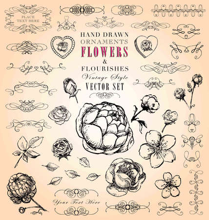 shabby chic: Hand Drawn Vintage Style Ornaments, Flowers   Flourishes Vector Set Illustration