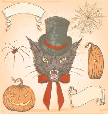 Hand Drawn Vintage Halloween Creepy Cat Vector Set  Colour fills are grouped separately from outlines for easy editing   Illustration