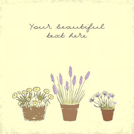 indoor garden: Vintage greeting card with the pot plants collection