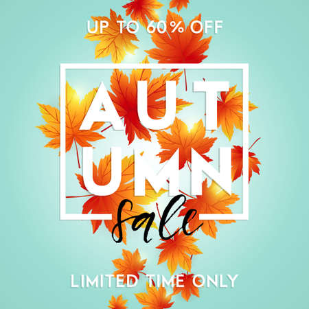 hi back: Autumn sale template with lettering. Bright fall leaves. Poster, card, label, design.