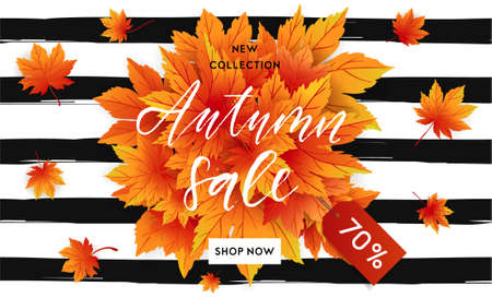 Autumn sale flyer template with lettering. Bright fall leaves. Poster, card, label, banner design. Bright geometrical background. Vector illustration Illustration