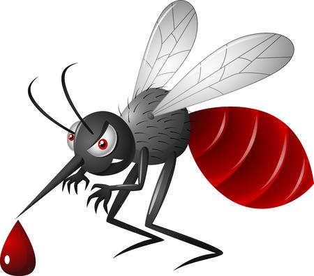 mosca caricatura: Mosquito de dibujos animados enojado Vectores
