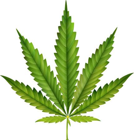 Cannabis leaf cartoon