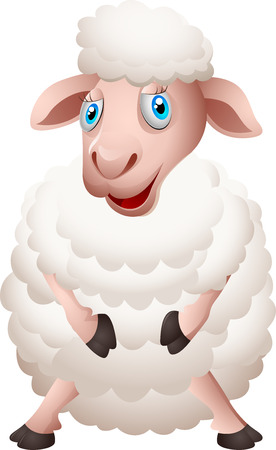 sheep wool: Cartoon sheep