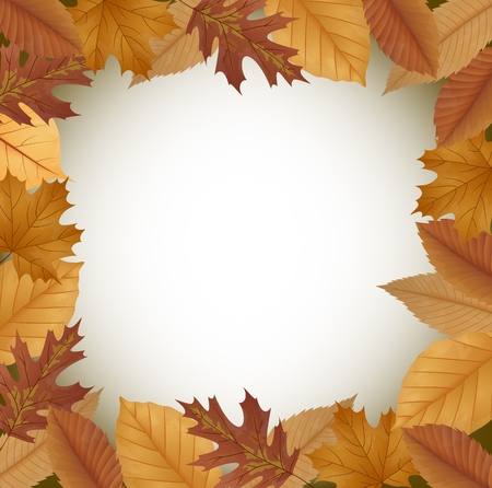 dried: Autumn background with dried leaves Illustration