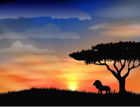 africa sunset: Sunset at africa with animal