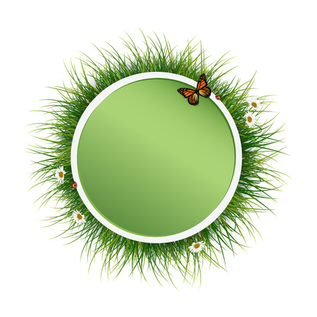 batterfly: Circle frame with green grass and batterfly