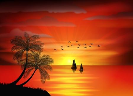 Foto de la puesta de sol con el pájaro en el mar y el mar en barco