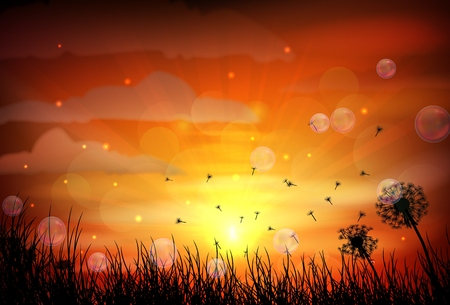 Illustration of sunrise and dragonfly Vector