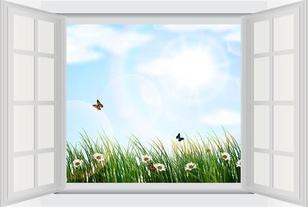 Aprire la finestra con fiori e farfalle Archivio Fotografico - 40587433
