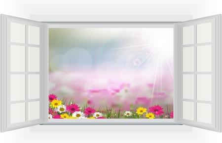open window: Open window with Beautiful flower is in the rays of light