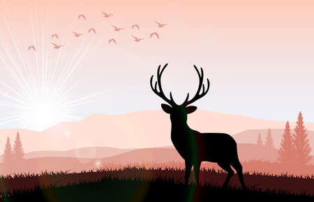 solstice: Silhouette of a deer standing on a hill at night