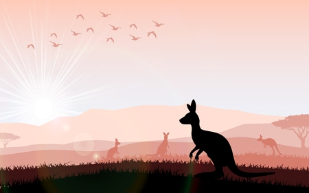 gum tree: Silhouette a kangaroo the feeding in the bright sunset. Vector