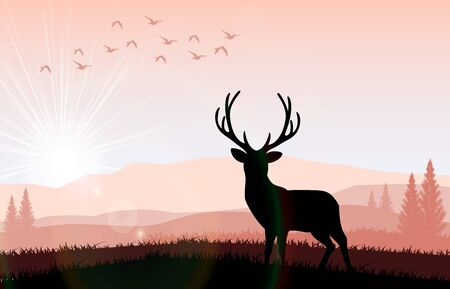 calm down: Silhouette a deer the feeding in the bright sunset. Vector