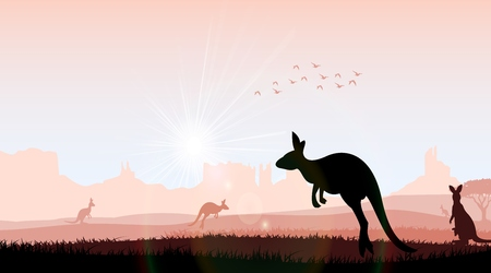 bush babies: Silhouette kangaroo in the evening. Vector