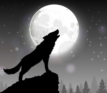 winter solstice: Silhouette of a wolf standing on a hill at night with moon Illustration