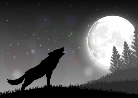 night sky stars: Silhouette of a wolf standing on a hill at night with moon Illustration
