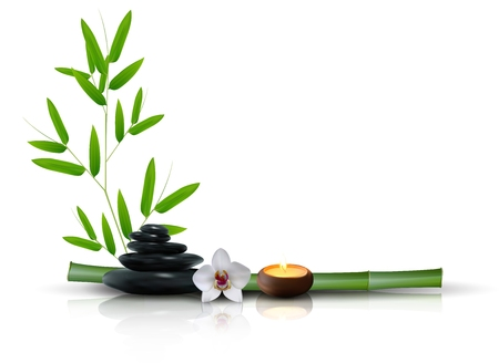 Stone, flower and bamboo isolated background