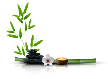 bambu: Piedra, la flor y el bambú aislado fondo Foto de archivo