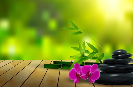 lastone: Stone, flower, wax and bamboo on the wood background Stock Photo