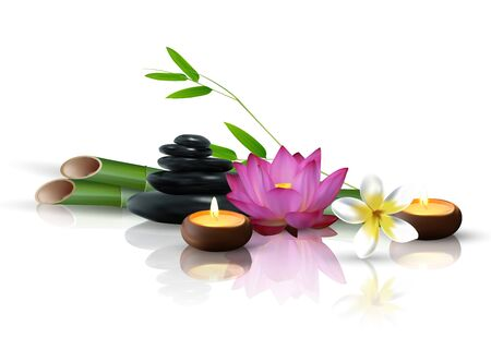 Bamboo, flowers, stone and wax isolated background