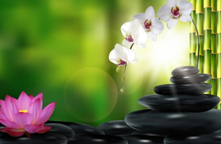 Stone, flower and bamboo background. Stock Photo