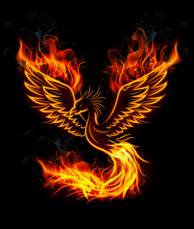 bird feathers: Illustration of Fire burning Phoenix Bird with black background Illustration