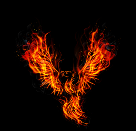 rising: Fire burning Phoenix Bird with black background