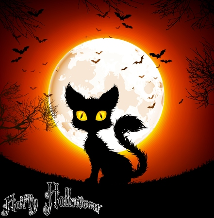 halloween poster: Halloween background a cat Illustration