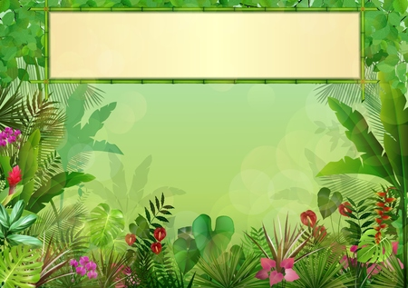 tropical tree: Tropical background with rectangle floral frame in concept bamboo Stock Photo