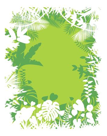 orchidee: Lascia la priorità bassa di piante tropicali