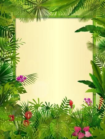 bambu: Fondo tropical con el marco floral rectángulo en el concepto de bambú