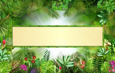 grass beautiful: Tropical background with rectangle floral frame in concept bamboo Illustration