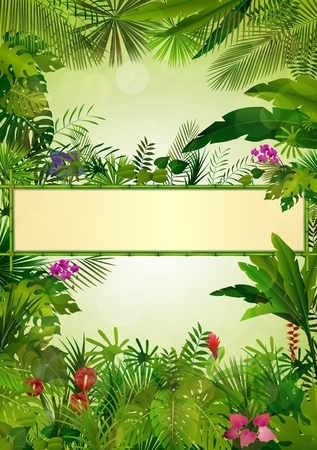 sky and grass: Tropical background with rectangle floral frame in concept bamboo Illustration