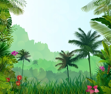exotic: Exotic tropical background beautiful Stock Photo