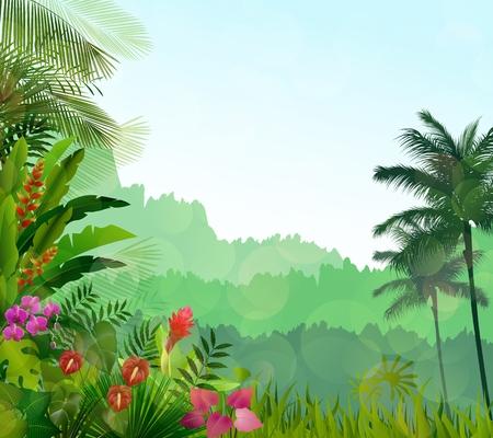 sky sun: Exotic tropical background beautiful Stock Photo