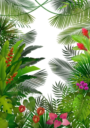 tropical tree: Exotic tropical background Illustration