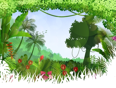 tropical tree: Tropical background beautiful with palm tree