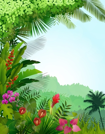 tree grass: Forest landscape of tropical background with sunrays