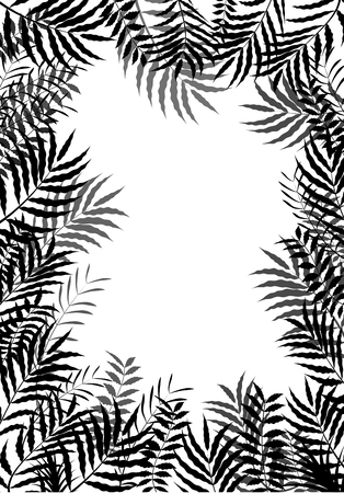 exotic plant: Palm leaves of frame background of silhouette Illustration