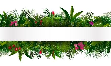 熱帯群葉。花柄背景 写真素材