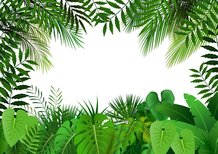 Jungle on white background Stock Illustratie