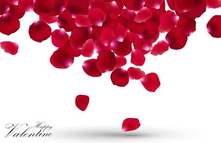 rose petals: Valentines day with rose petals on white background