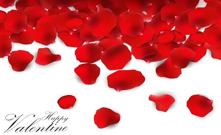 Red rose petals on a white background Illustration