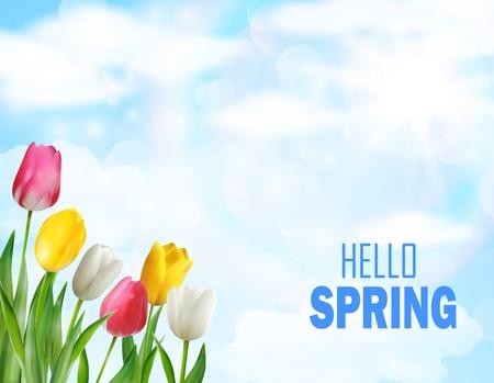 Tulpen bloemen prachtige lente