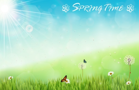 butterfly background: Spring background with butterflies and dragonfly in meadow